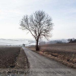 Kuernach - Winterspaziergang - 29-01-2017 - Bildergalerie © Gerald Langer