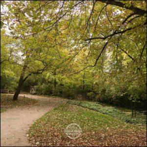 20171008-Herbst-in-Wuerzburg-iPhone-6s-©-Gerald-Langer_10