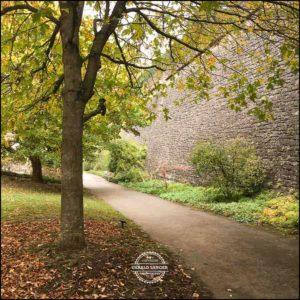 20171008-Herbst-in-Wuerzburg-iPhone-6s-©-Gerald-Langer_11
