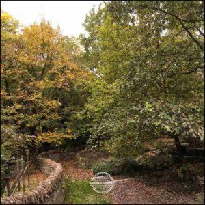20171008-Herbst-in-Wuerzburg-iPhone-6s-©-Gerald-Langer_19