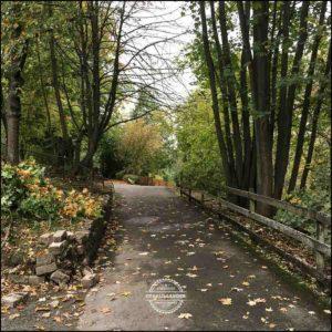 20171008-Herbst-in-Wuerzburg-iPhone-6s-©-Gerald-Langer_20
