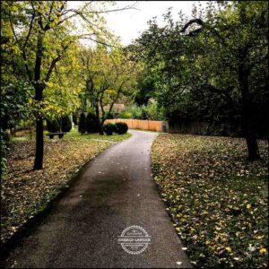 20171008-Herbst-in-Wuerzburg-iPhone-6s-©-Gerald-Langer_26