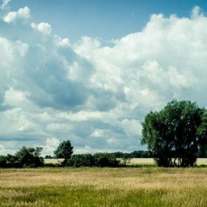 20170823-Usedom-©-Gerald-Langer_148