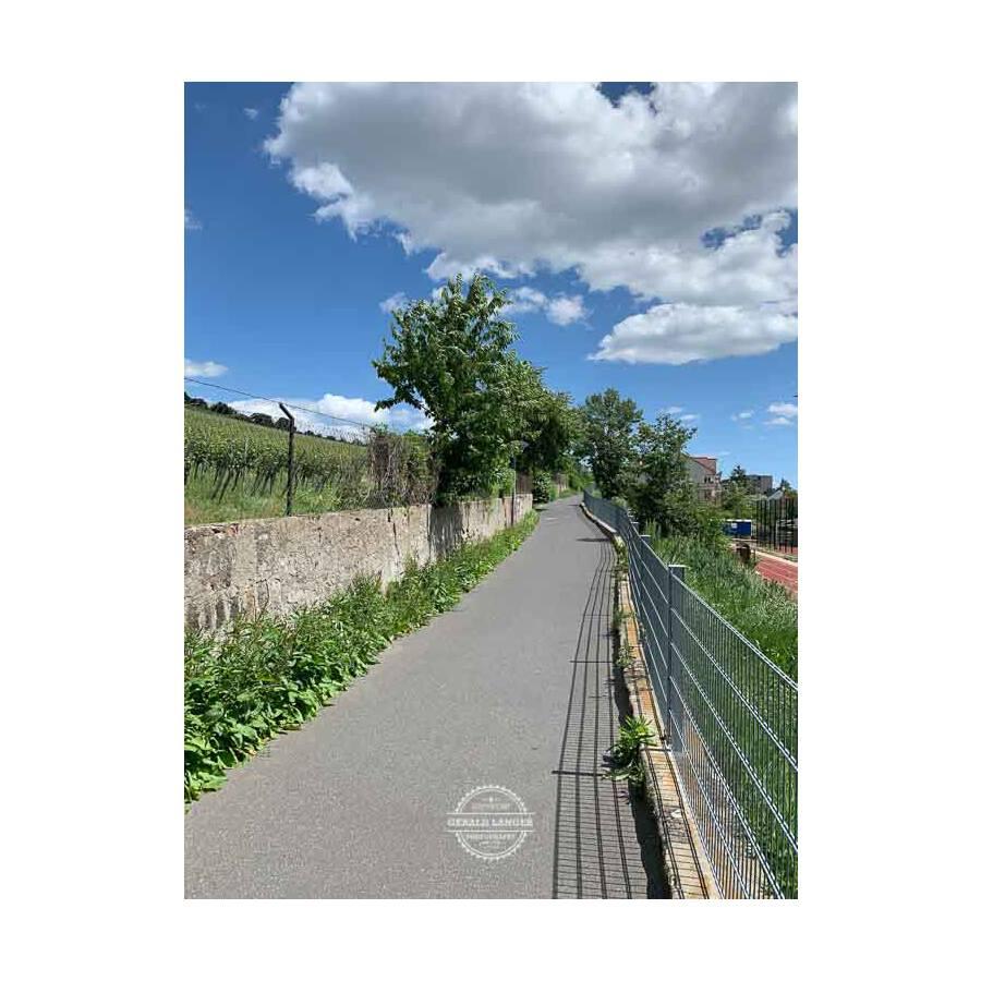 20190608_Wuerzburg_Grombuehl-©-Gerald-Langer_68