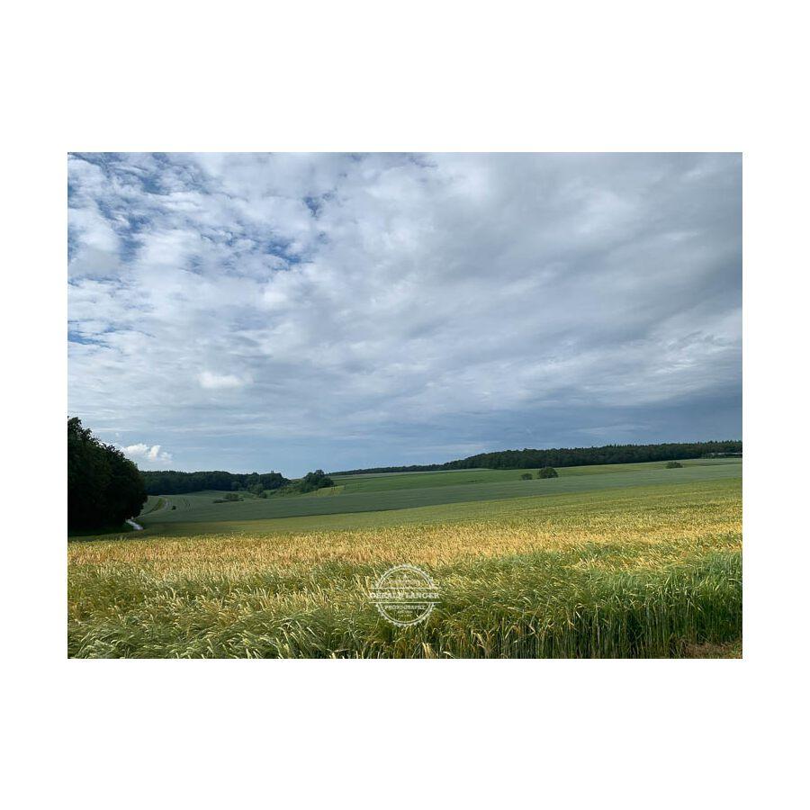 20190616_Radtour_Kuernach-Rothof-©-Gerald-Langer_5