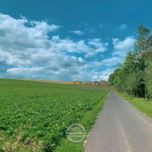 20190813_Mit-dem-Rad-von-Kuernach-nach-Wuerzburg-©-Gerald-Langer_5