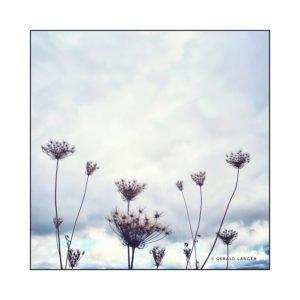 20191005_Am-Edeka-Kuernach_shot-by-iPhoneXR-©-Gerald-Langer_12