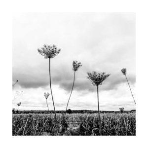 20191005_Am-Edeka-Kuernach_shot-by-iPhoneXR-©-Gerald-Langer_20
