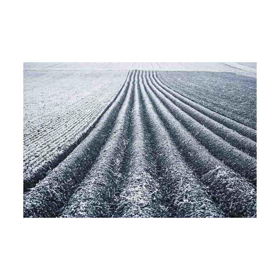 20200102_Kuernach-im-Winter-©-Gerald-Langer_12