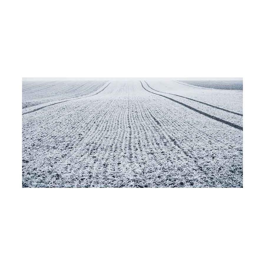 20200102_Kuernach-im-Winter-©-Gerald-Langer_18