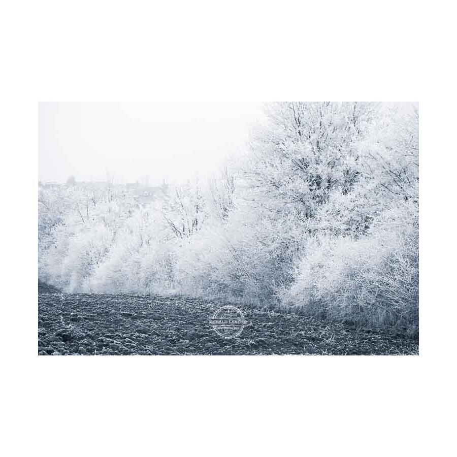 20200102_Kuernach-im-Winter-©-Gerald-Langer_24