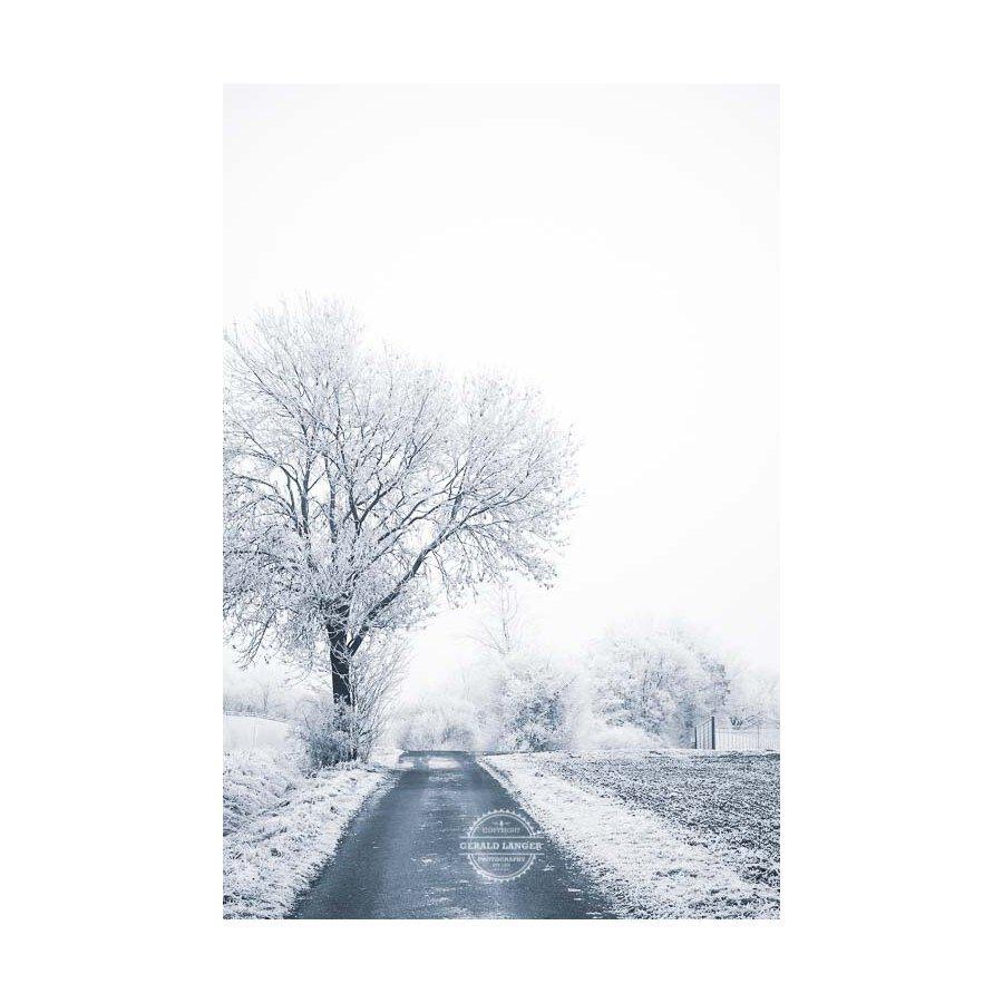 20200102_Kuernach-im-Winter-©-Gerald-Langer_38
