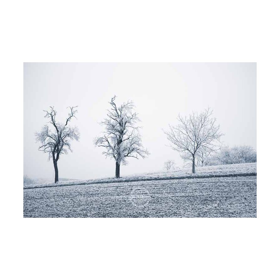 20200102_Kuernach-im-Winter-©-Gerald-Langer_41