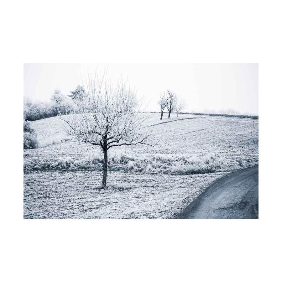 20200102_Kuernach-im-Winter-©-Gerald-Langer_47