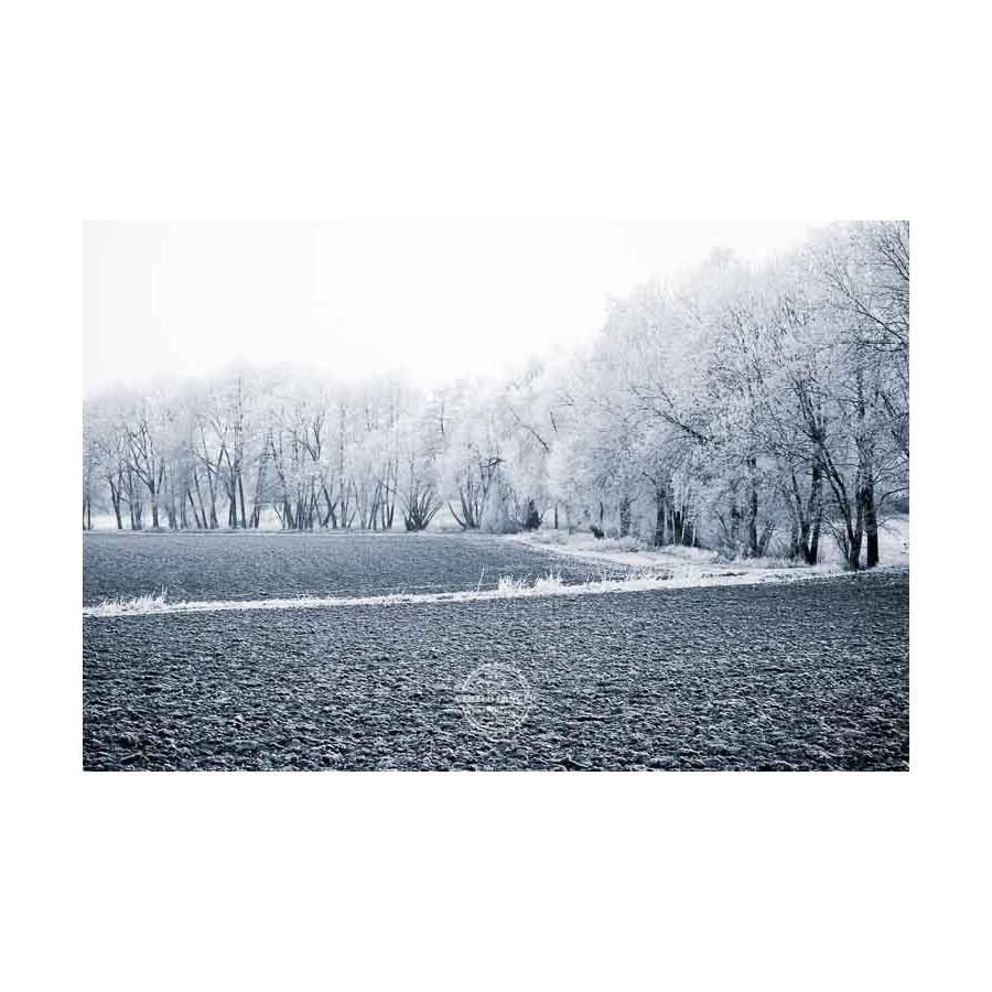 20200102_Kuernach-im-Winter-©-Gerald-Langer_49