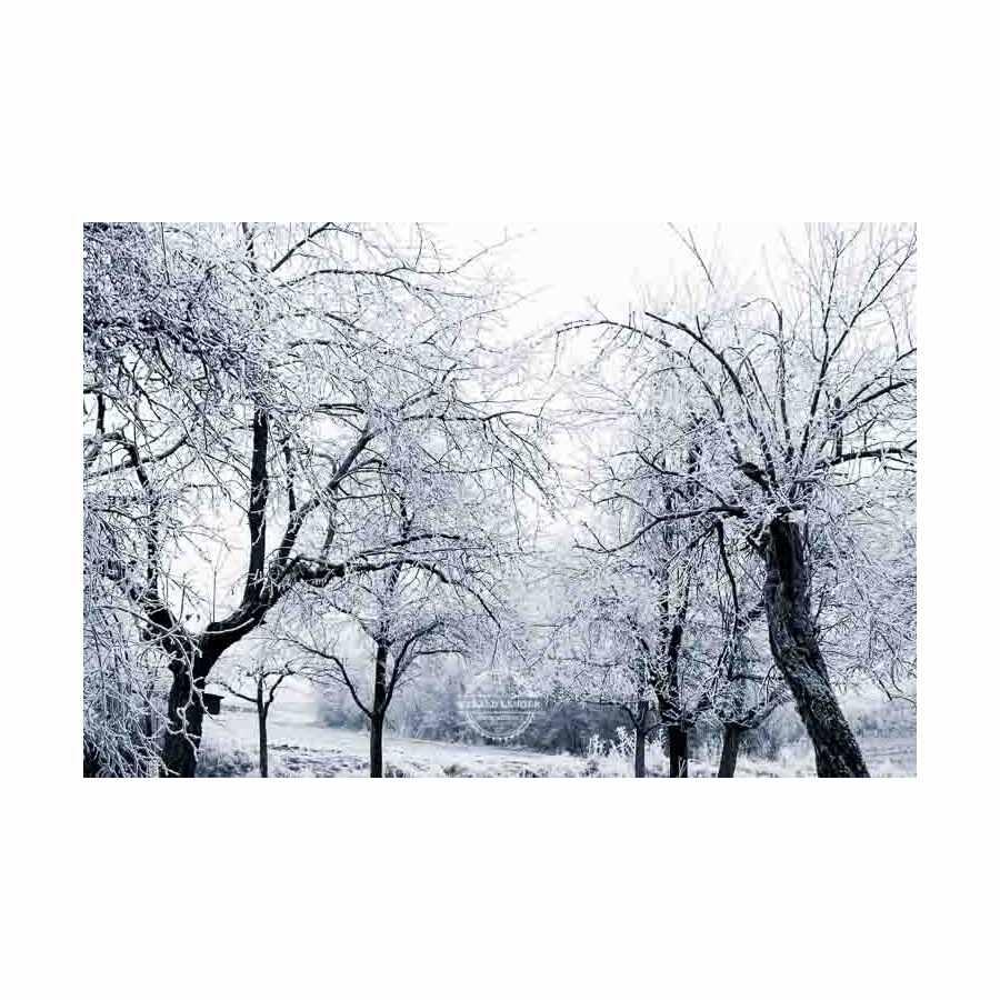 20200102_Kuernach-im-Winter-©-Gerald-Langer_50