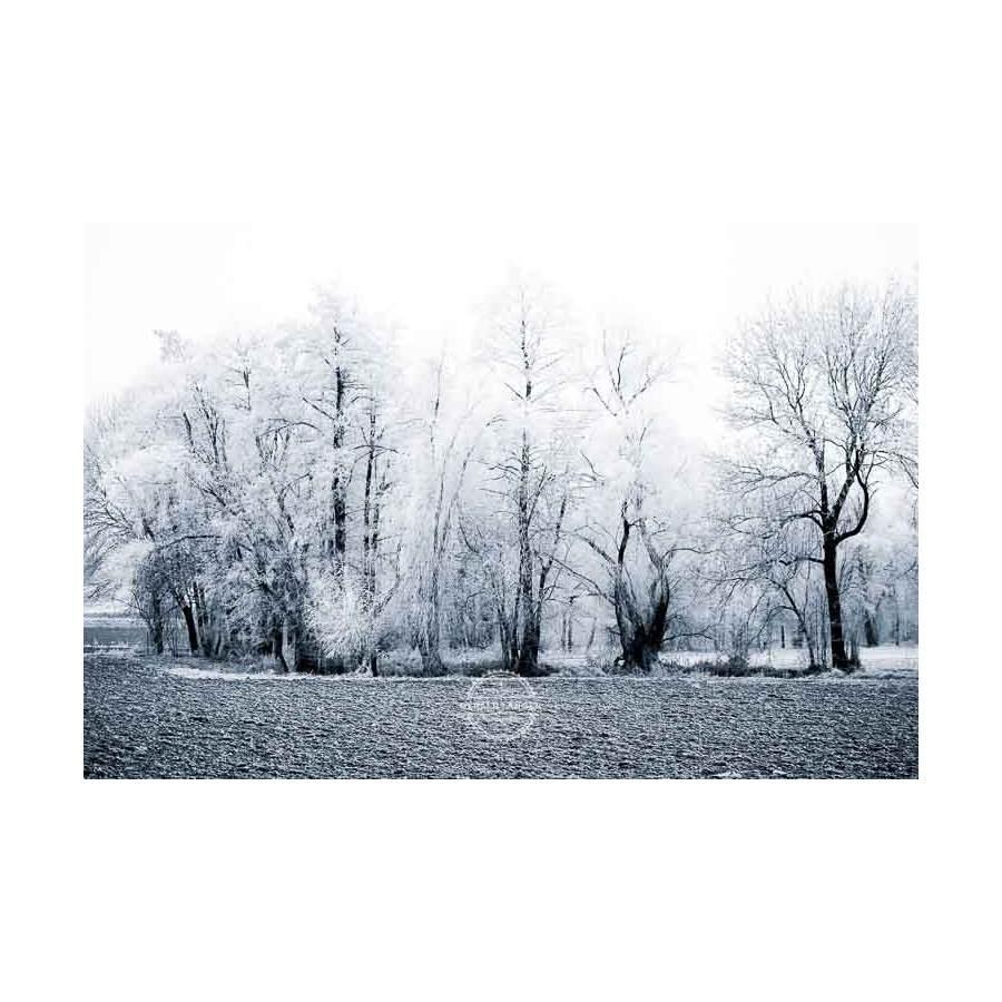 20200102_Kuernach-im-Winter-©-Gerald-Langer_55