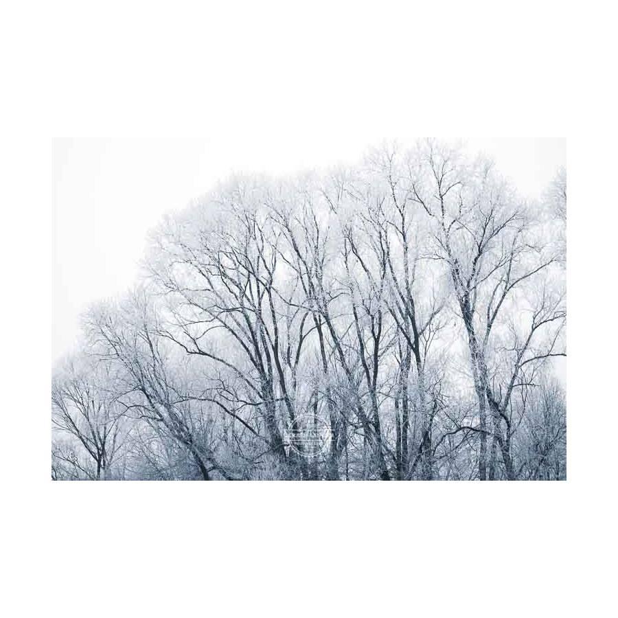 20200102_Kuernach-im-Winter-©-Gerald-Langer_59