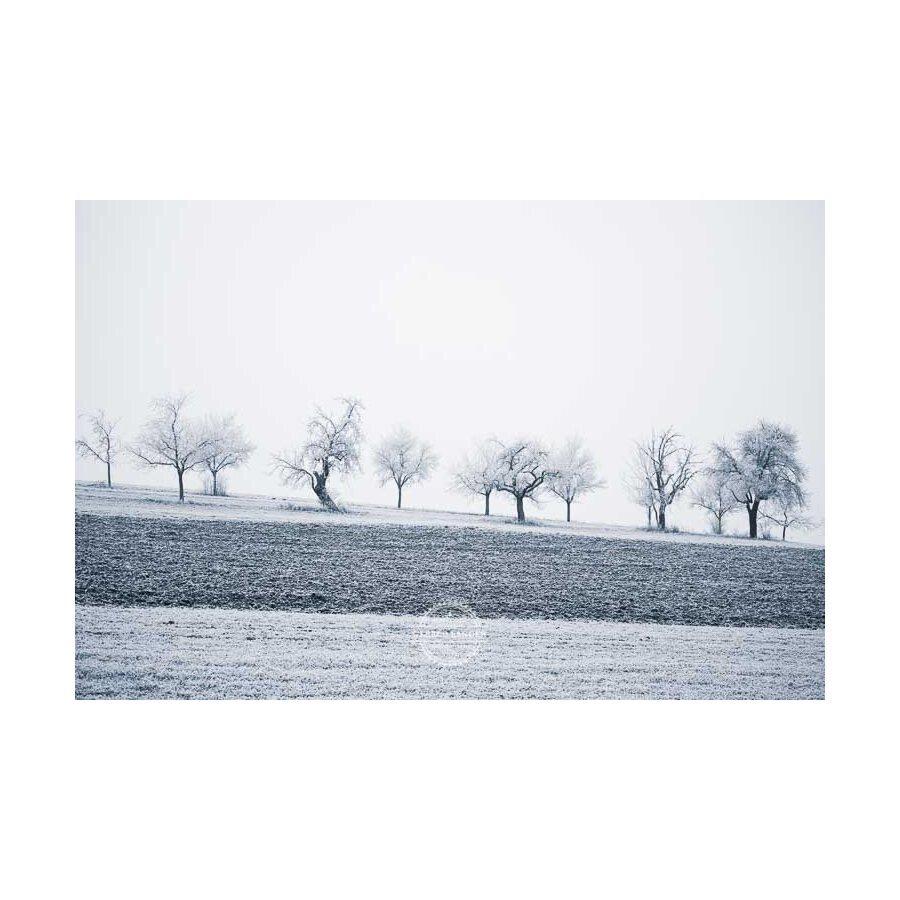 20200102_Kuernach-im-Winter-©-Gerald-Langer_65