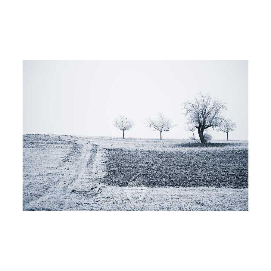 20200102_Kuernach-im-Winter-©-Gerald-Langer_67