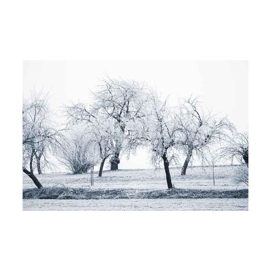 20200102_Kuernach-im-Winter-©-Gerald-Langer_70