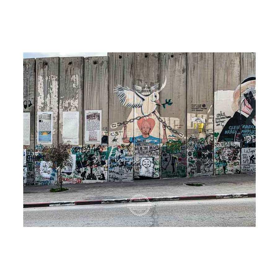 20200223_Israel_Travel_by-iPhoneXR-©-Gerald-Langer_573